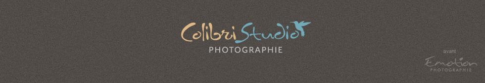 Colibri Studio logo