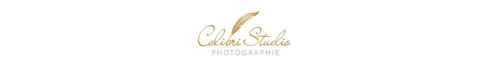 Colibri Studio, Photographe Mariage, Famille, France, Nimes, Montpellier, Gard, Heralut, Languedoc-Roussillon, PACA logo